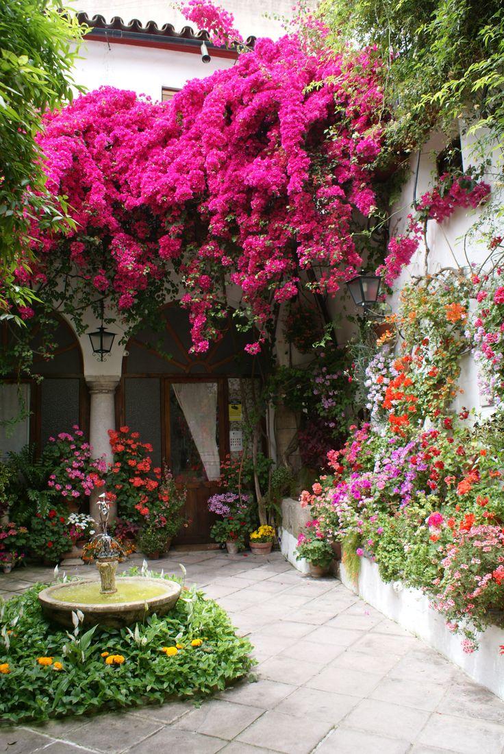 Ландшафтный дизайн в мексиканском стиле