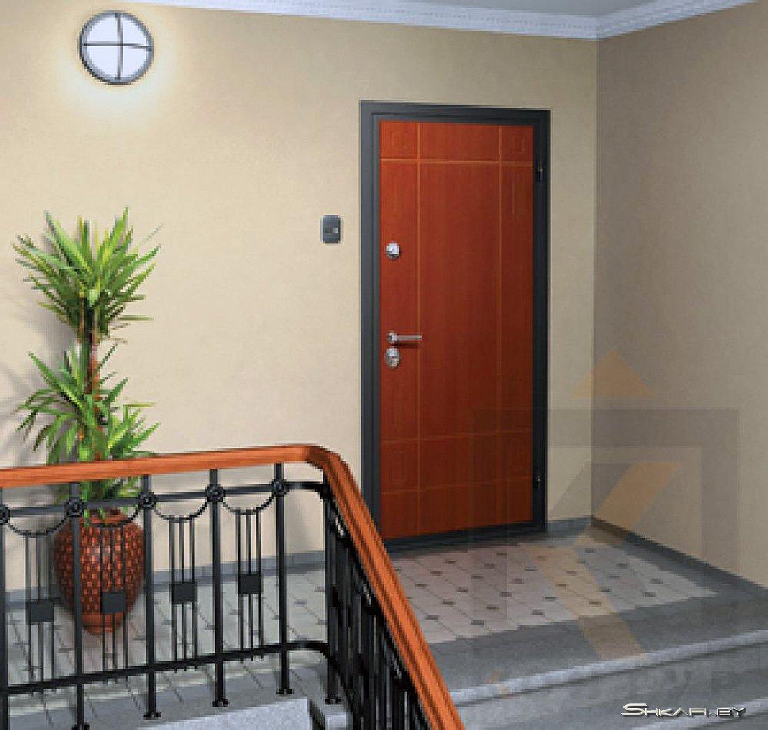 Как правильно купить стальные двери