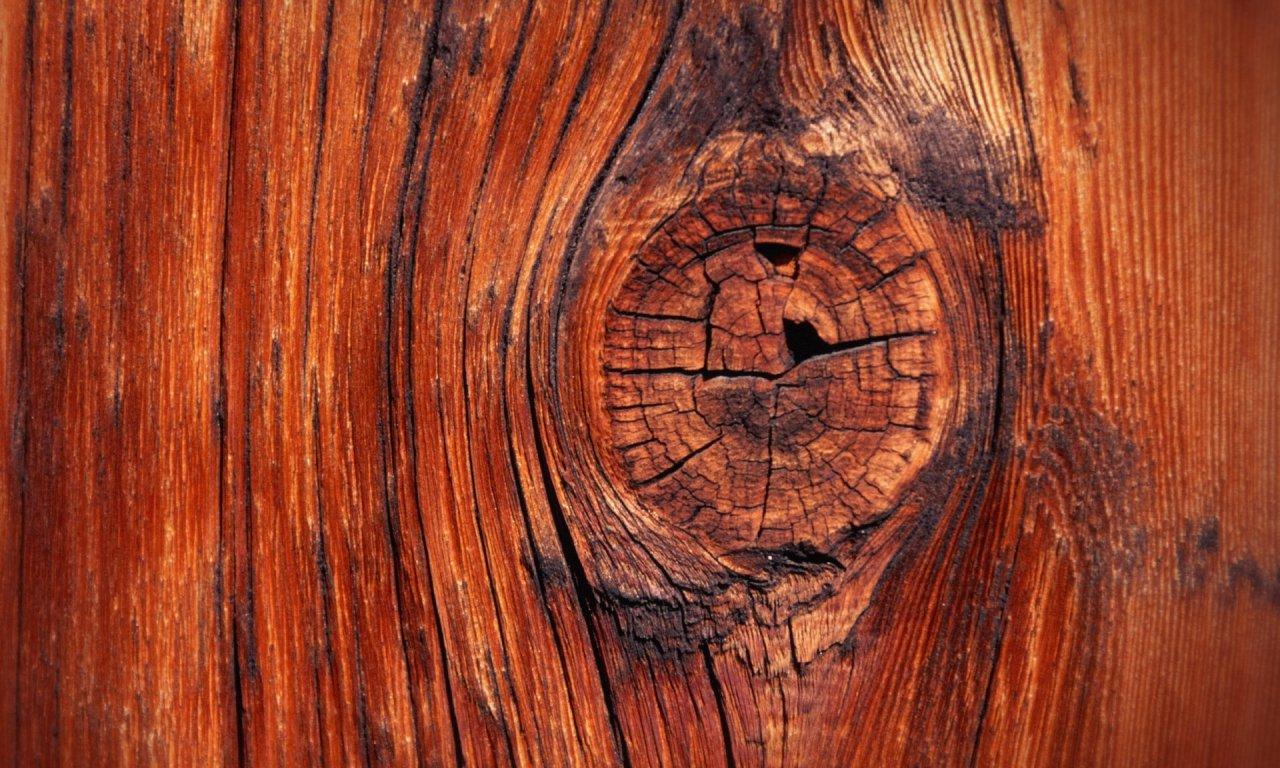 Пороки древесины