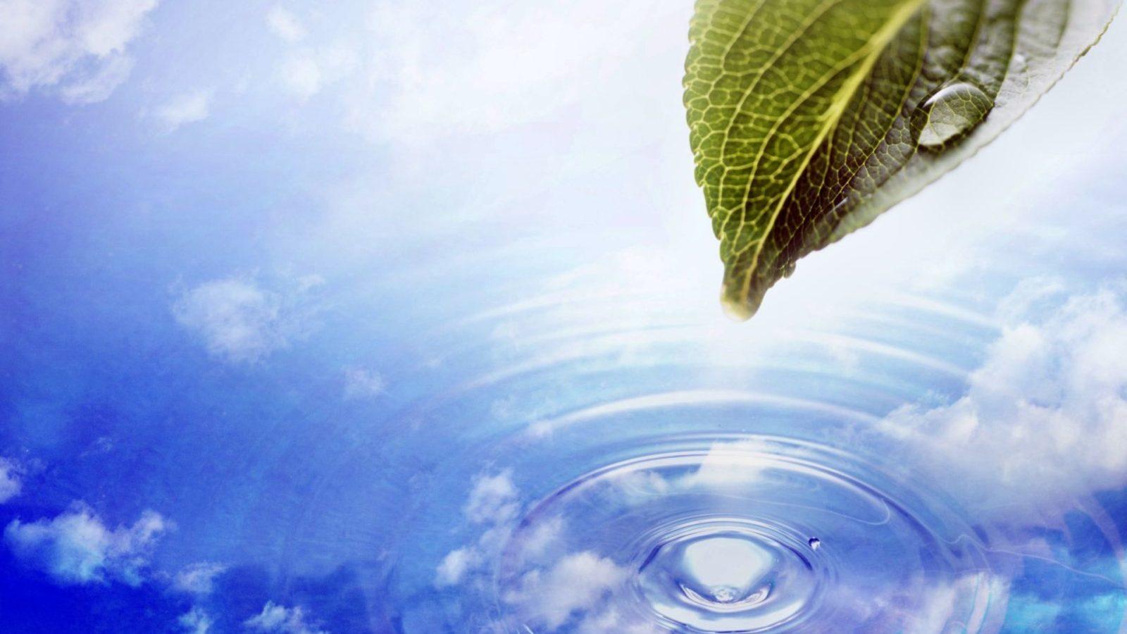 Чистая вода - угольные фильтры aqualife