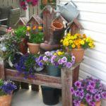 Сад в стиле кантри - оформляем цветник