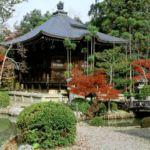 Зона отдыха в саду в японском стиле